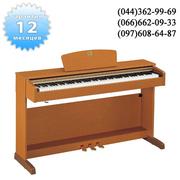 YAMAHA CLP330 купить цифровое пианино