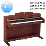 Yamaha clp 330 цифровое пианино продам по всей Украине