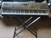 Продаю синтезатор CASIO LK  300 TV в  упаковке, с документами!